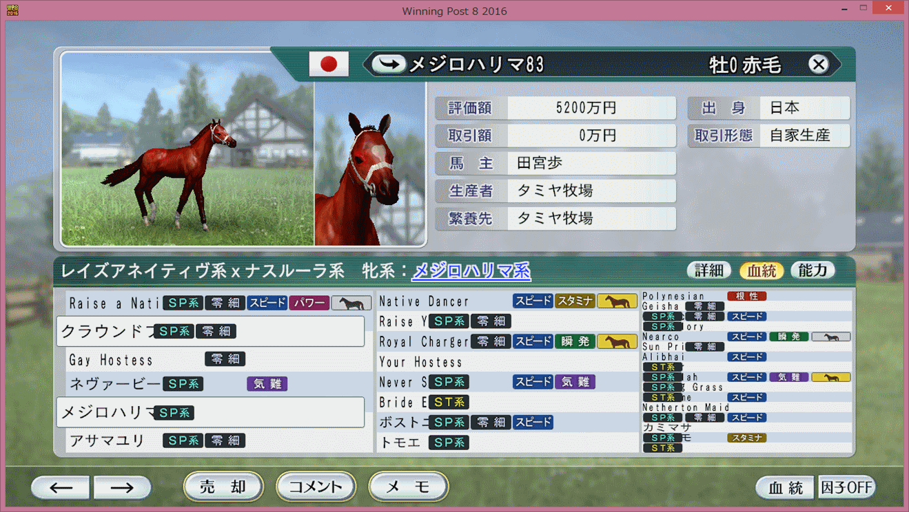 【ウイポ8 2016】幼駒誕生1